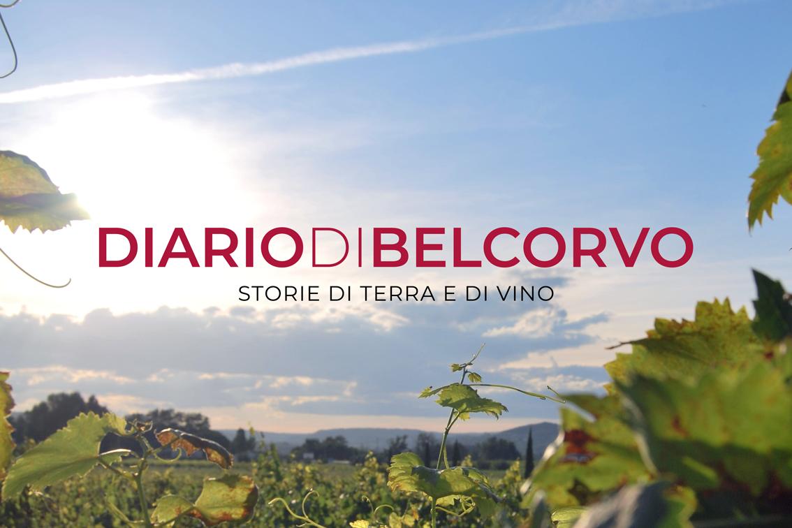 Diario di Belcorvo